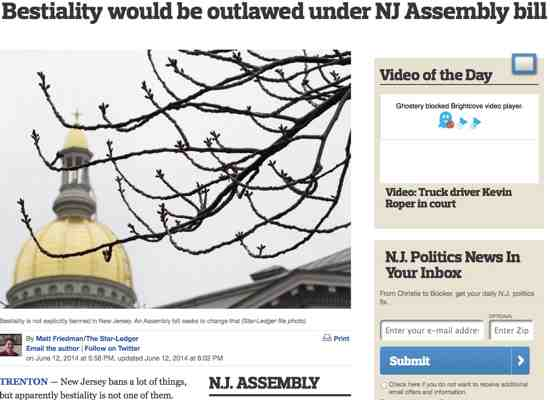 Too Many New Jersey Residents Screwing Animals