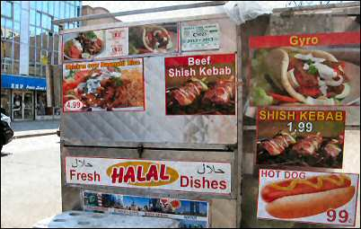 halal dishes food cart on 74th st in jackson heights