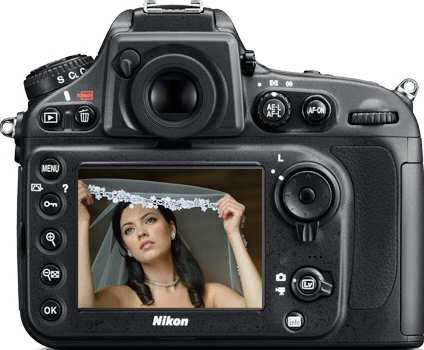 Nikon D800 D-SLR Camera Back